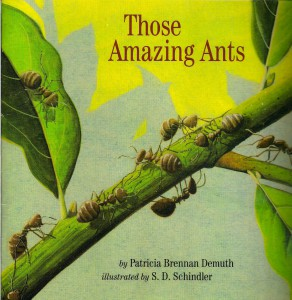 Those Amazing Ants Book Cover