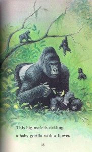 Gorillas tickling with flower page 35
